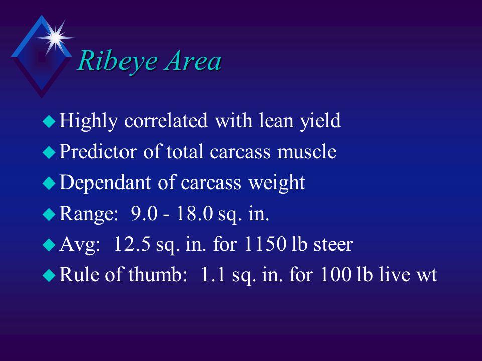 Ribeye Area u Highly correlated with lean yield u Predictor of total carcass muscle u Dependant of carcass weight u Range: 9.0 - 18.0 sq.
