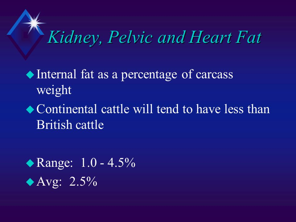 Kidney, Pelvic and Heart Fat u Internal fat as a percentage of carcass weight u Continental cattle will tend to have less than British cattle u Range: 1.0 - 4.5% u Avg: 2.5%