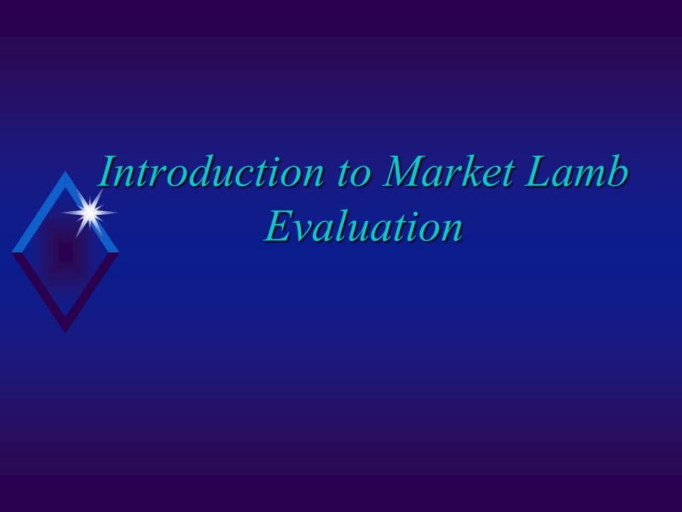Introduction to Market Lamb Evaluation