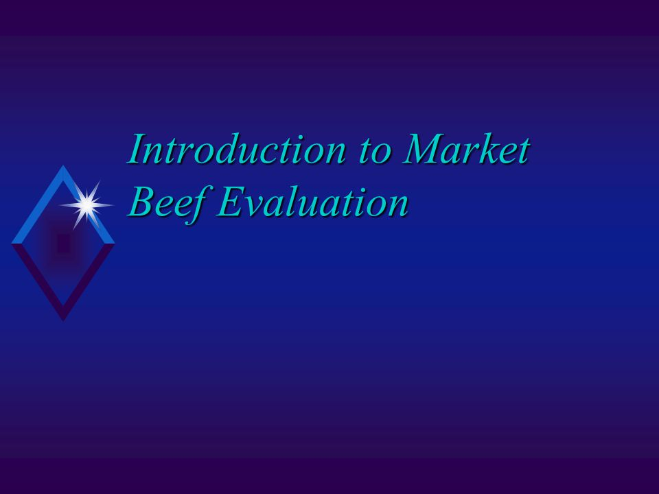 Introduction to Market Beef Evaluation