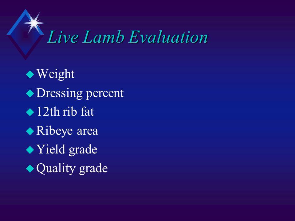 Live Lamb Evaluation u Weight u Dressing percent u 12th rib fat u Ribeye area u Yield grade u Quality grade