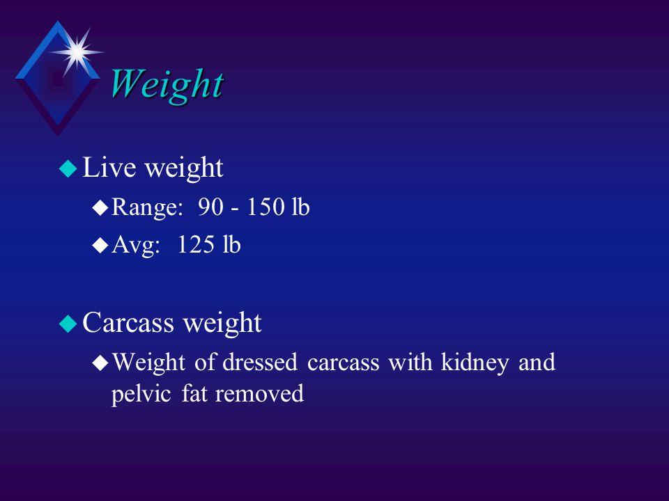 Weight u Live weight u Range: 90 - 150 lb u Avg: 125 lb u Carcass weight u Weight of dressed carcass with kidney and pelvic fat removed