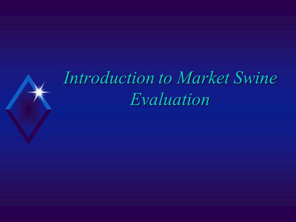 Introduction to Market Swine Evaluation