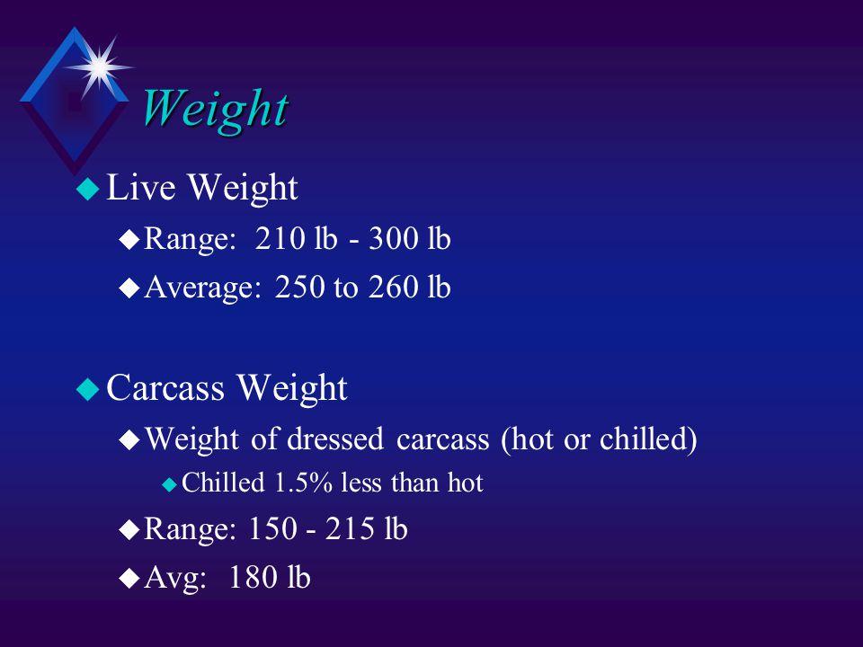 Weight u Live Weight u Range: 210 lb - 300 lb u Average: 250 to 260 lb u Carcass Weight u Weight of dressed carcass (hot or chilled) u Chilled 1.5% less than hot u Range: 150 - 215 lb u Avg: 180 lb