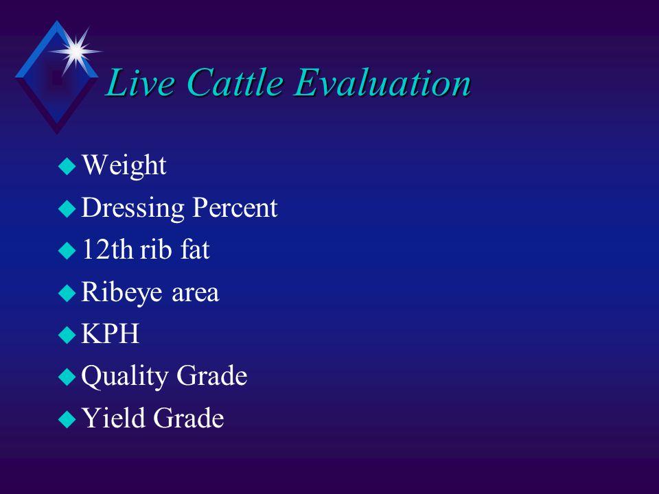 Live Cattle Evaluation u Weight u Dressing Percent u 12th rib fat u Ribeye area u KPH u Quality Grade u Yield Grade