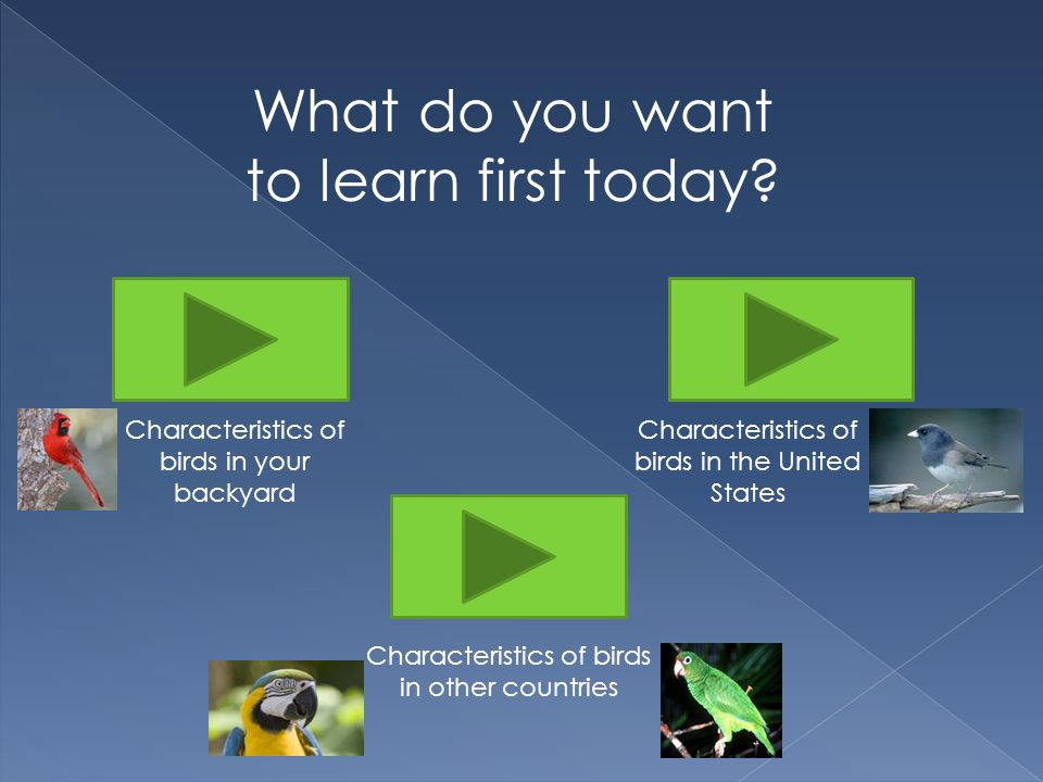 What do you want to learn first today.
