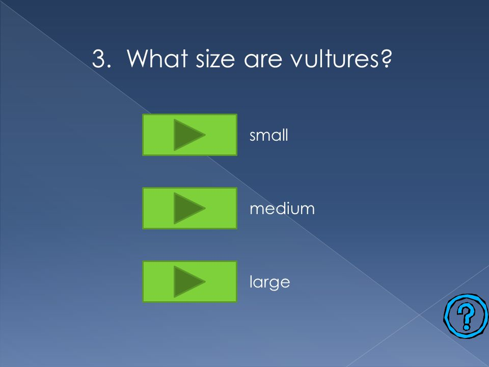 3. What size are vultures small medium large