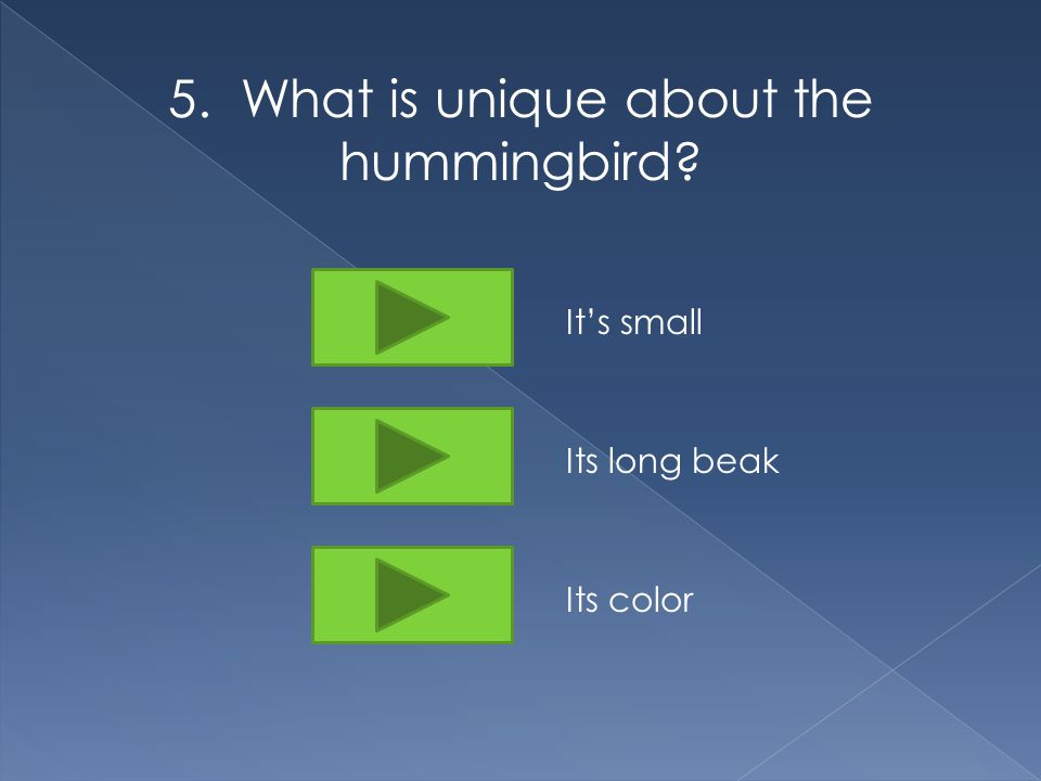 5. What is unique about the hummingbird It's small Its long beak Its color