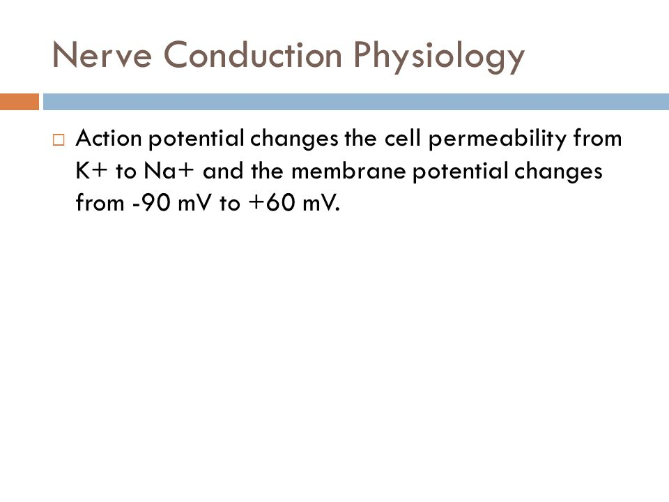 Nerve Conduction Physiology  Action potential changes the cell permeability from K+ to Na+ and the membrane potential changes from -90 mV to +60 mV.