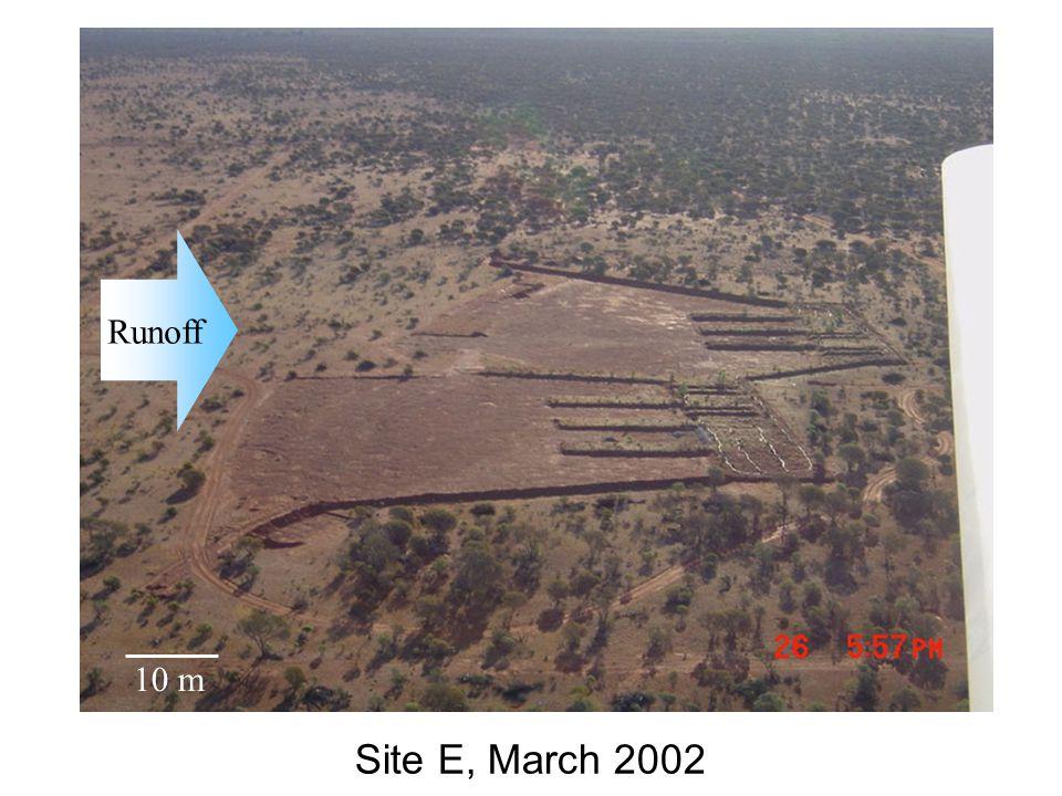 Site E, March 2002 Runoff 10 m