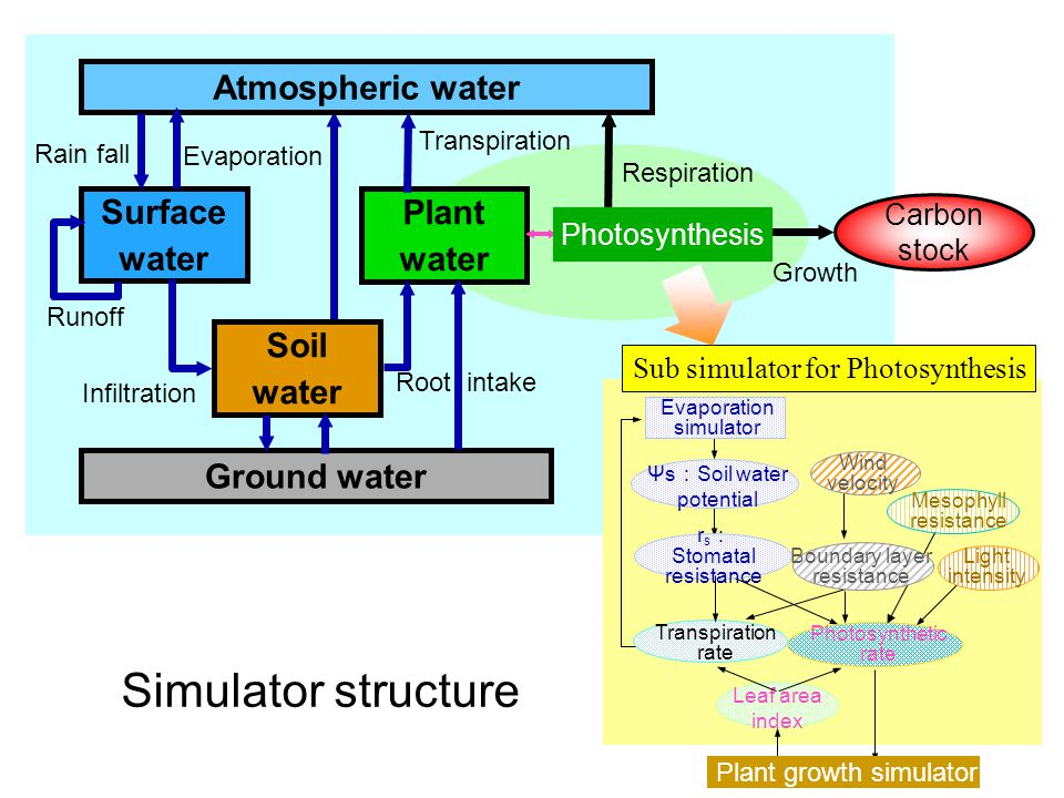 Simulator structure Atmospheric water Ground water Surface water Soil water Plant water Rain fall Evaporation Transpiration Infiltration Root intake Runoff Growth Carbon stock Respiration Evaporation simulator Ψs : Soil water potential r s : Stomatal resistance Wind velocity Photosynthetic rate Mesophyll resistance Transpiration rate Leaf area index Light intensity Sub simulator for Photosynthesis Photosynthesis Plant growth simulator Boundary layer resistance