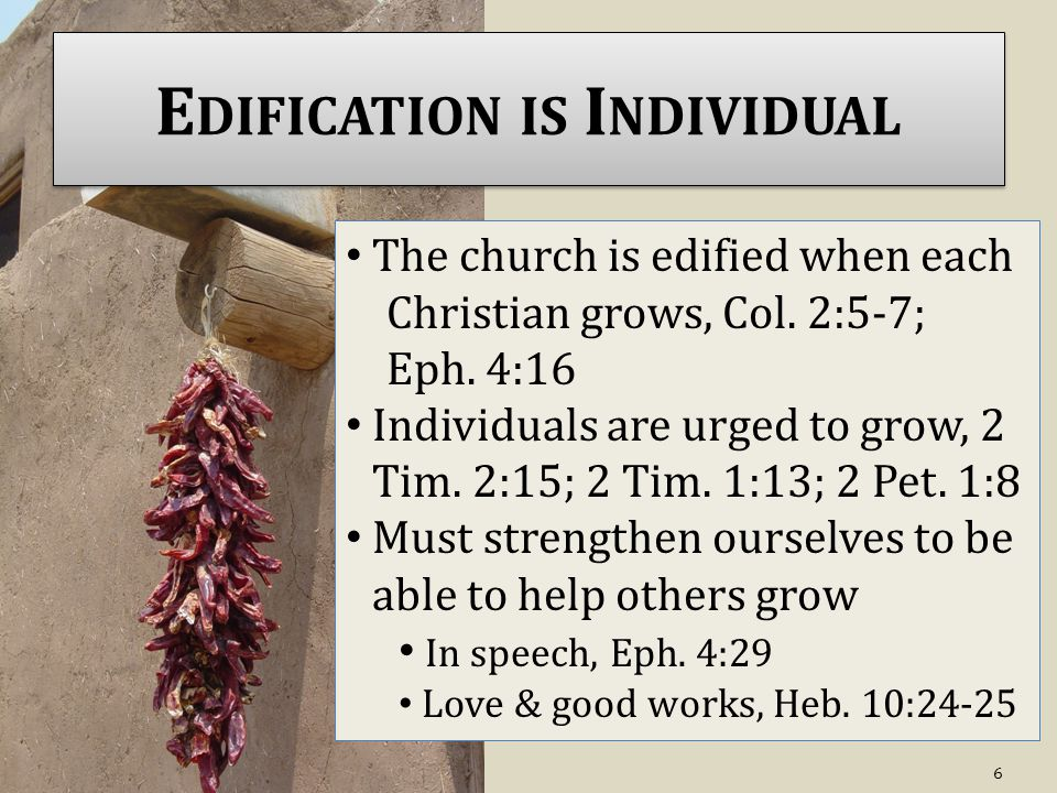 E DIFICATION IS I NDIVIDUAL The church is edified when each Christian grows, Col.