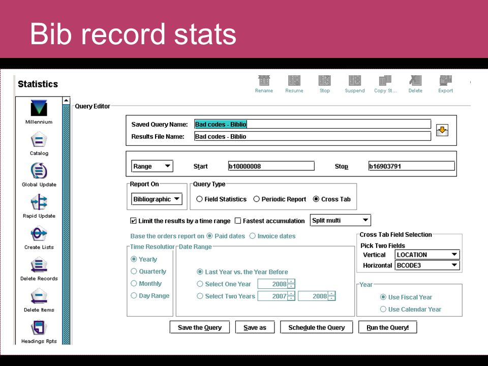 Bib record stats