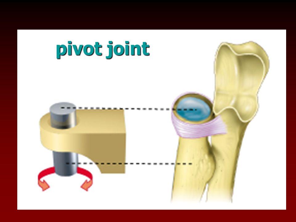 pivot joint