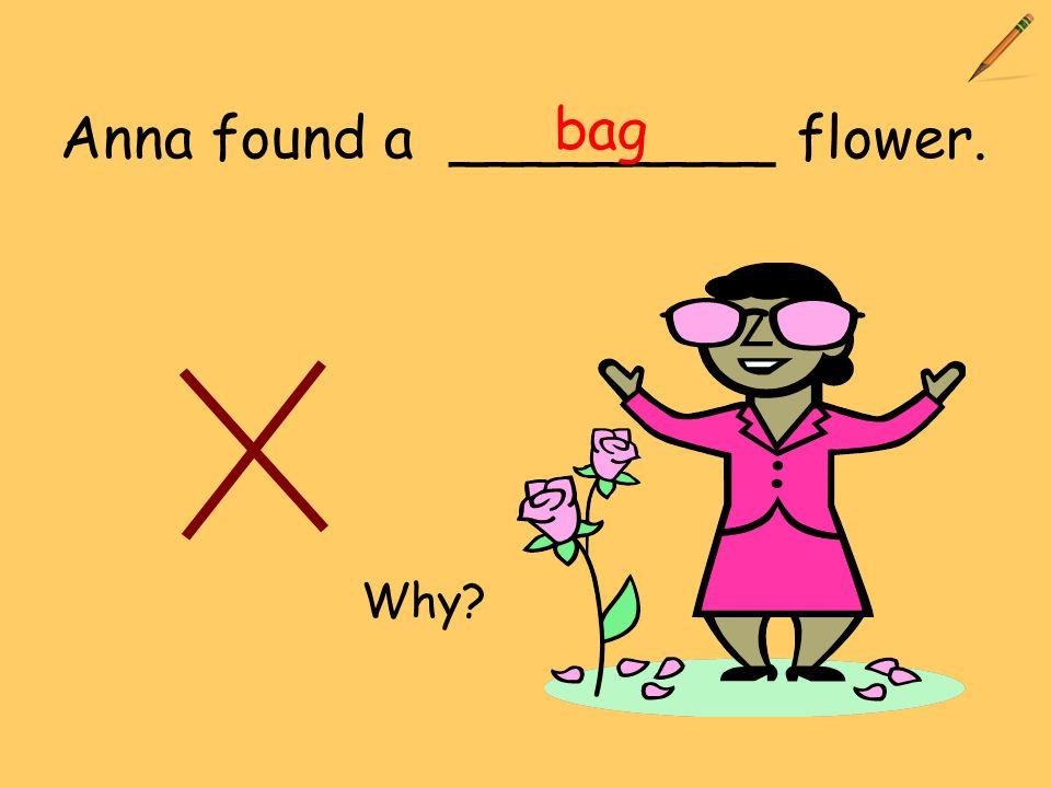 Anna found a _________ flower. bag Why?