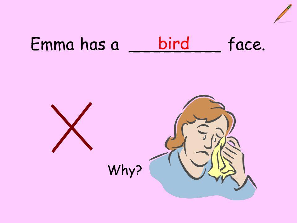 Emma has a _________ face. bird Why?