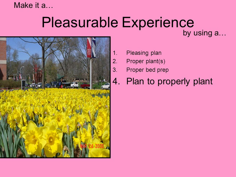 Pleasurable Experience 1.Pleasing plan 2.Proper plant(s) 3.Proper bed prep 4.Plan to properly plant Make it a… by using a…
