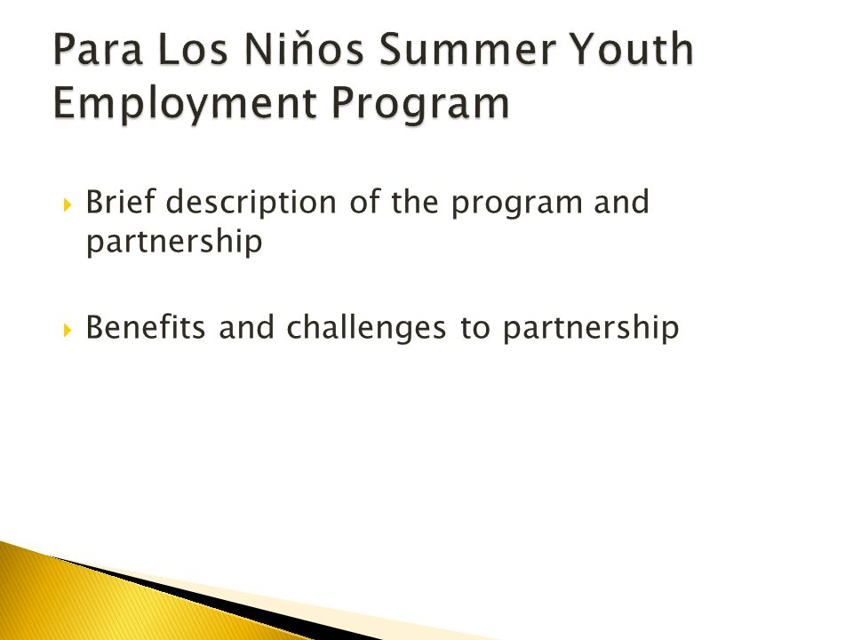  Brief description of the program and partnership  Benefits and challenges to partnership