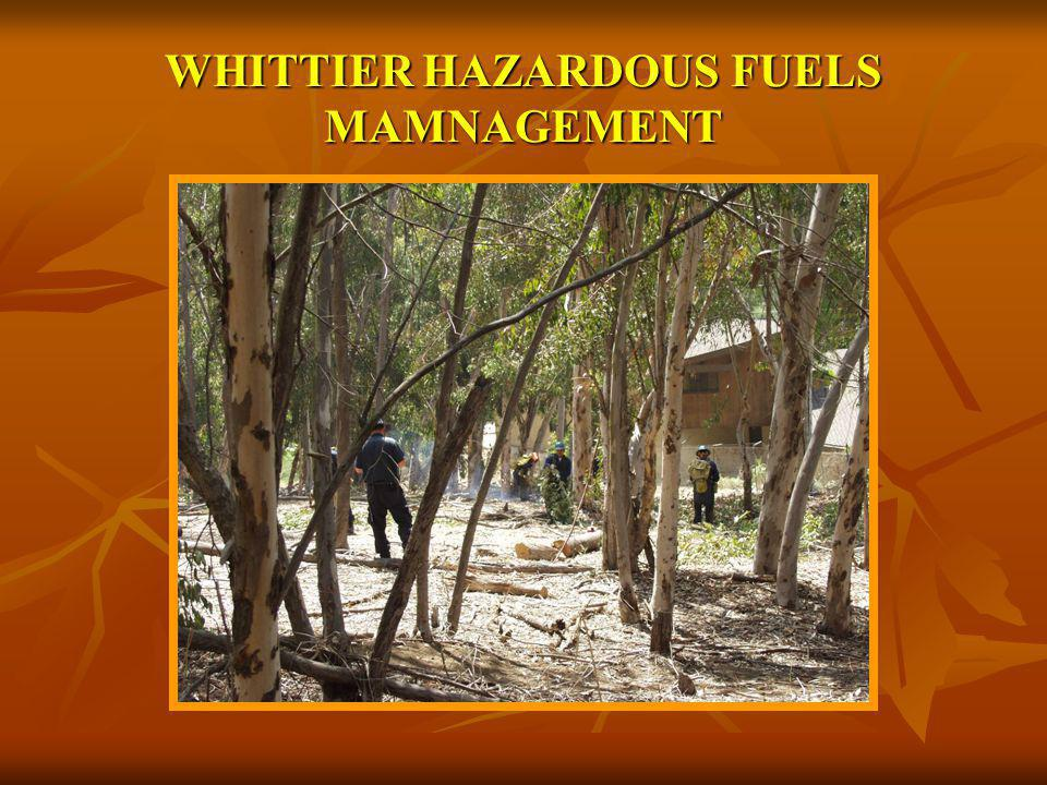 WHITTIER HAZARDOUS FUELS MAMNAGEMENT