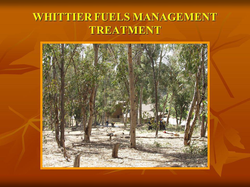 WHITTIER FUELS MANAGEMENT TREATMENT