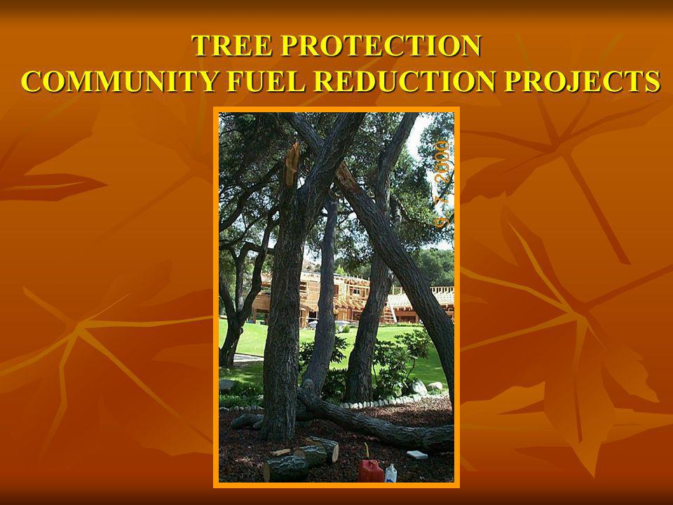 TREE PROTECTION COMMUNITY FUEL REDUCTION PROJECTS