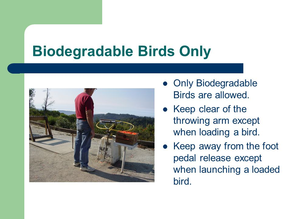 Biodegradable Birds Only Only Biodegradable Birds are allowed.