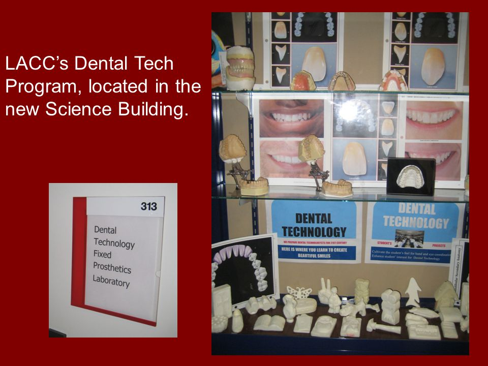 LACC's Dental Tech Program, located in the new Science Building.