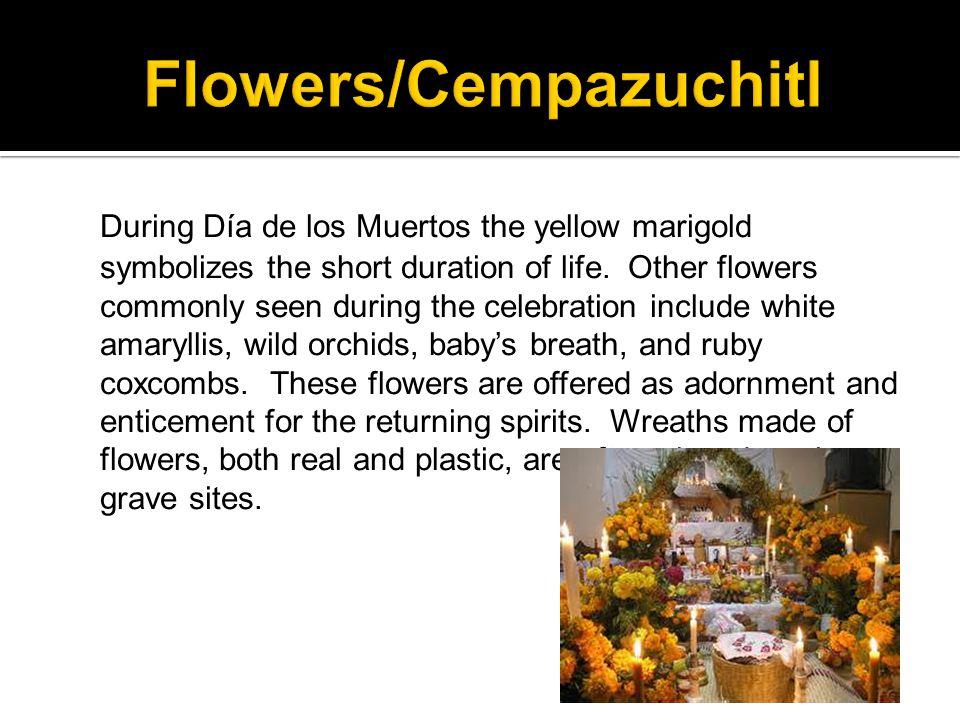 During Día de los Muertos the yellow marigold symbolizes the short duration of life.