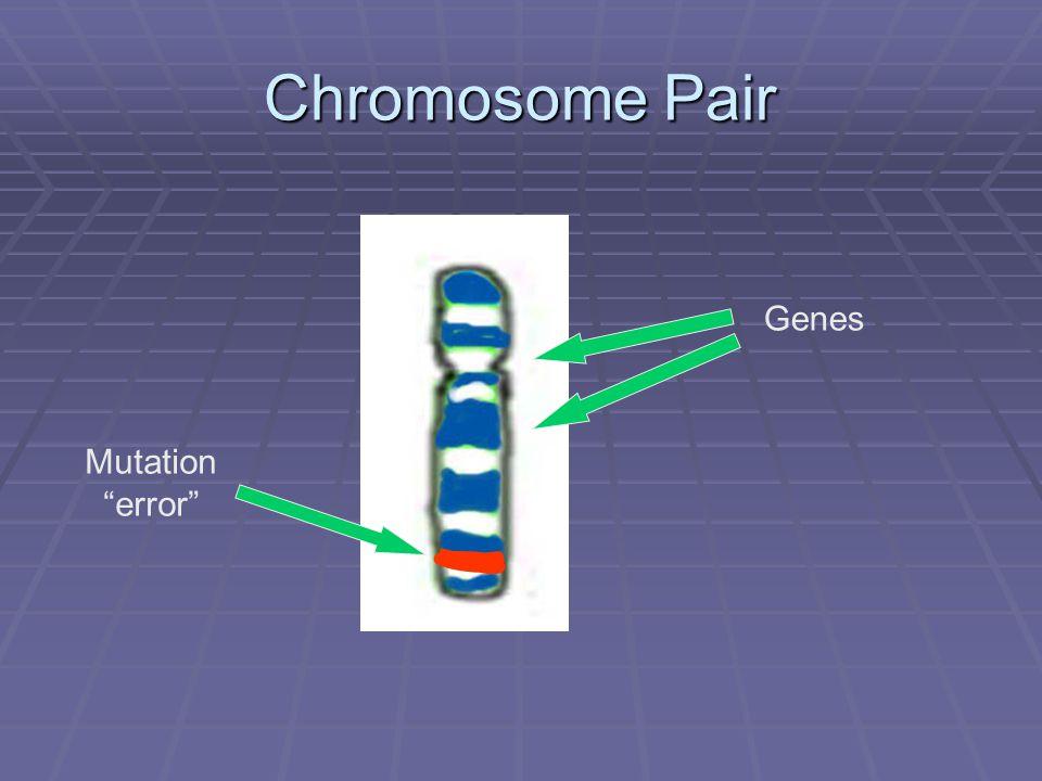 Chromosome Pair Genes Mutation error