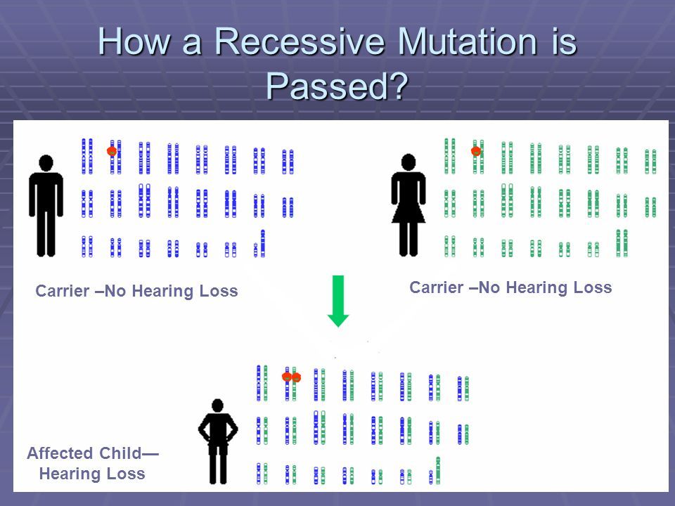 How a Recessive Mutation is Passed? Carrier –No Hearing Loss Affected Child— Hearing Loss