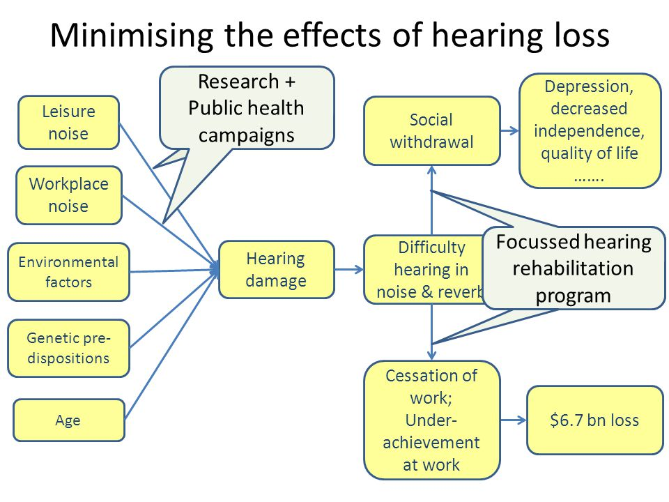 Minimising the effects of hearing loss Leisure noise Hearing damage Difficulty hearing in noise & reverb Workplace noise Environmental factors Genetic pre- dispositions $6.7 bn loss Depression, decreased independence, quality of life …….