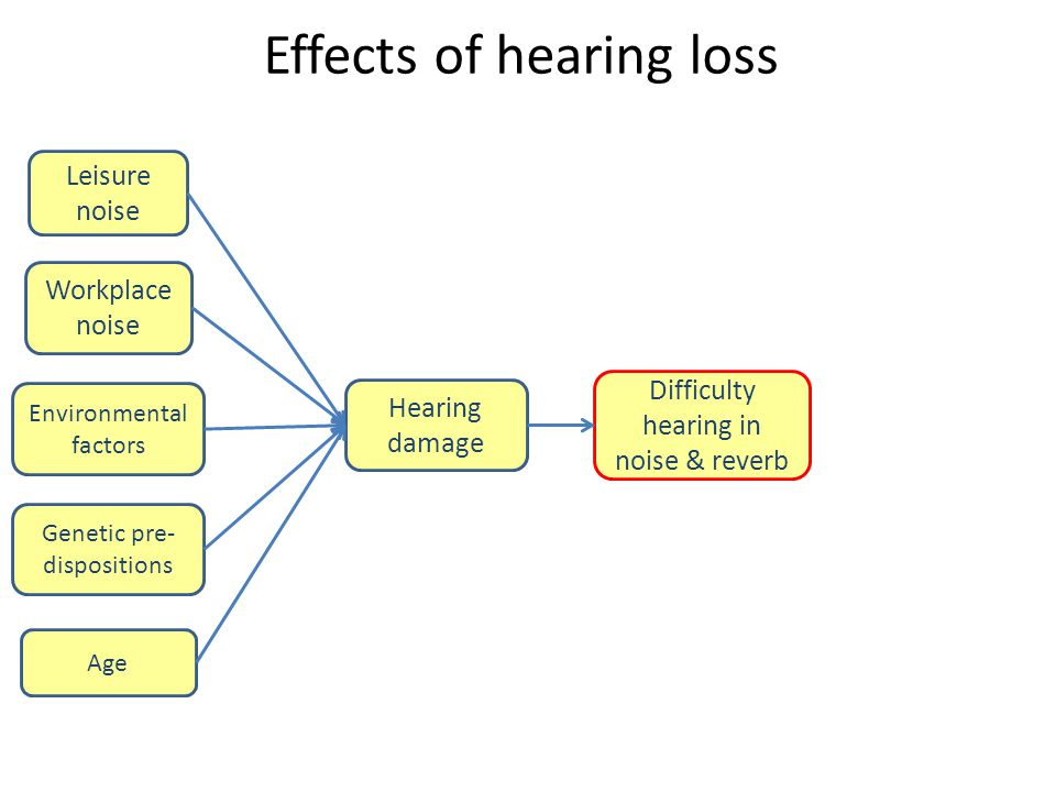 Effects of hearing loss Leisure noise Hearing damage Workplace noise Difficulty hearing in noise & reverb Environmental factors Genetic pre- dispositi
