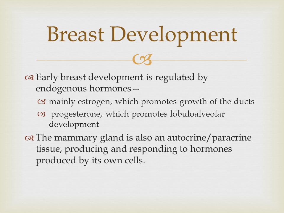   Early breast development is regulated by endogenous hormones—  mainly estrogen, which promotes growth of the ducts  progesterone, which promotes