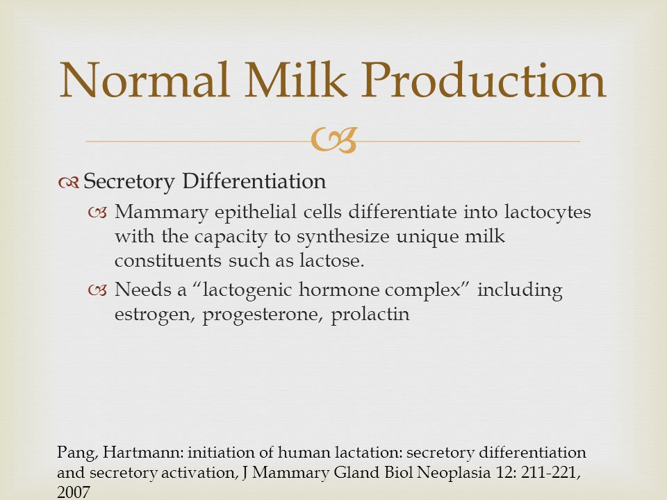   Secretory Differentiation  Mammary epithelial cells differentiate into lactocytes with the capacity to synthesize unique milk constituents such a