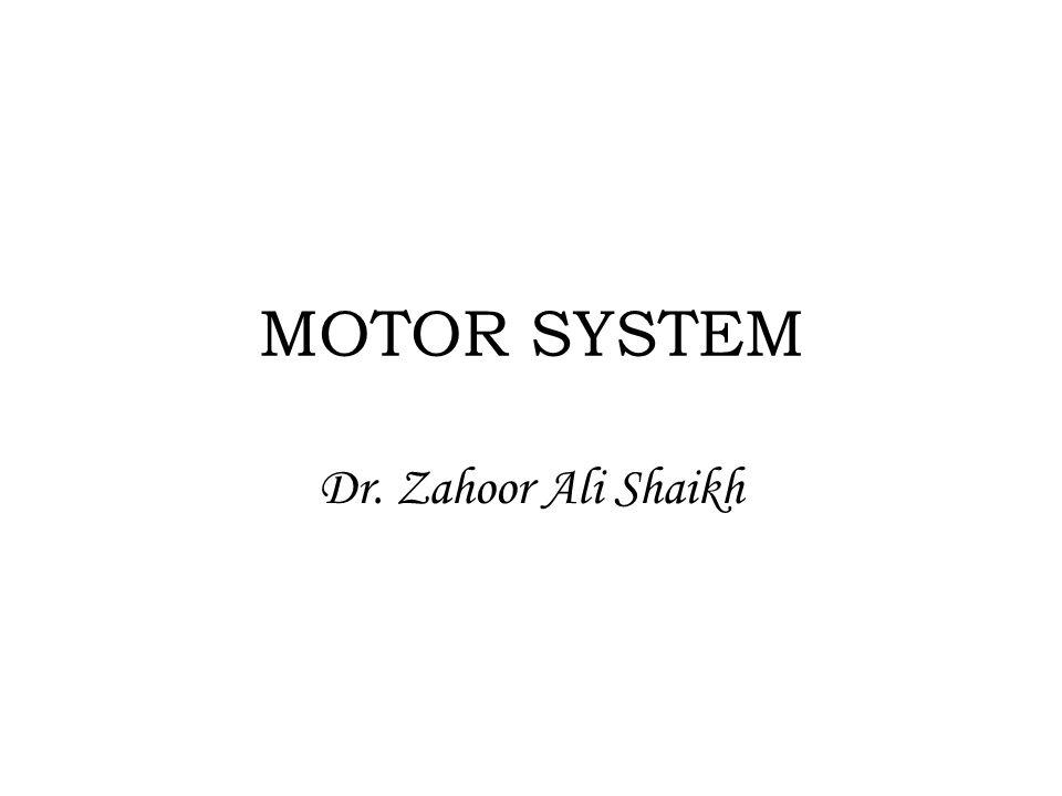 MOTOR SYSTEM Dr. Zahoor Ali Shaikh
