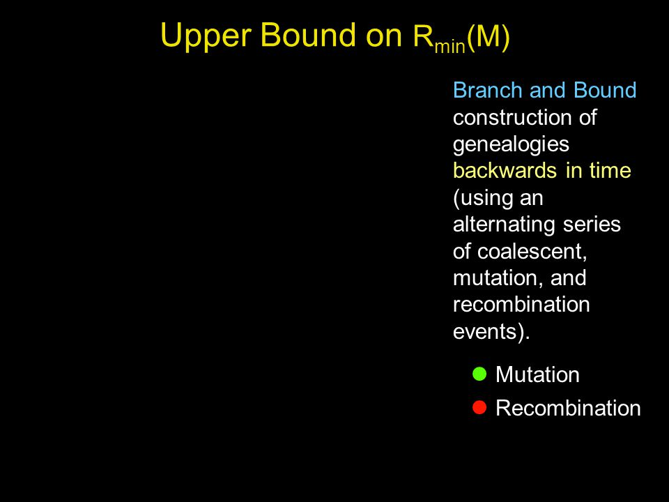 19710365284 Mutation Recombination Upper Bound on R min (M) Branch and Bound construction of genealogies backwards in time (using an alternating series of coalescent, mutation, and recombination events).
