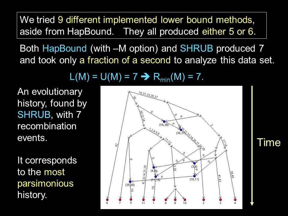 We tried 9 different implemented lower bound methods, aside from HapBound.