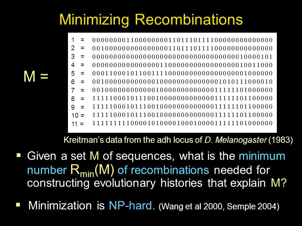 Bounds on the Minimum Number R min (M) of Recombinations R min (M) L(M) < M, a set of sequences < U(M) Minimum No efficient method.