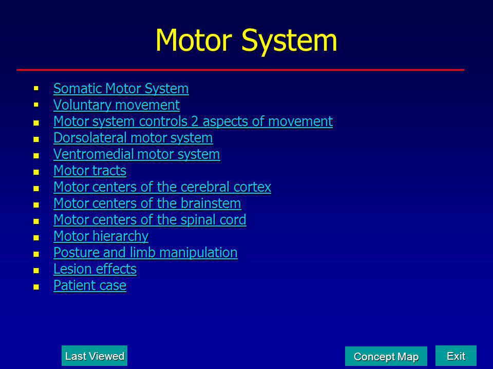 Association and Supplementary Motor Areas Desired outcome of the action (Goal) Premotor Area Movement strategy Primary Motor Area Motor plan/ execution Cerebellum Timing, coordination, motor learning Function of the Various Motor Areas 2/5 Goal StrategyPlanExecution How movement occurs Last Viewed Last Viewed Motor System Motor System Exit Concept Map Concept Map