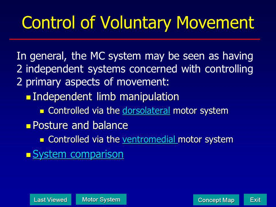 Dualisms in the Motor System What are the two subsystems that comprise the somatic motor system.