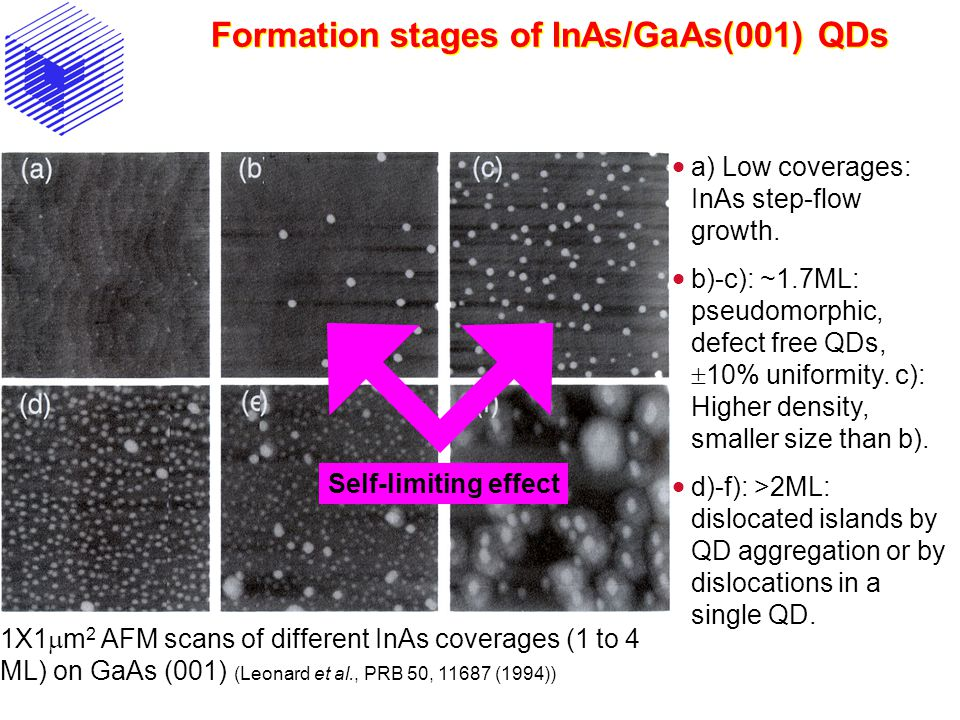 Formation stages of InAs/GaAs(001) QDs 1X1  m 2 AFM scans of different InAs coverages (1 to 4 ML) on GaAs (001) (Leonard et al., PRB 50, 11687 (1994)
