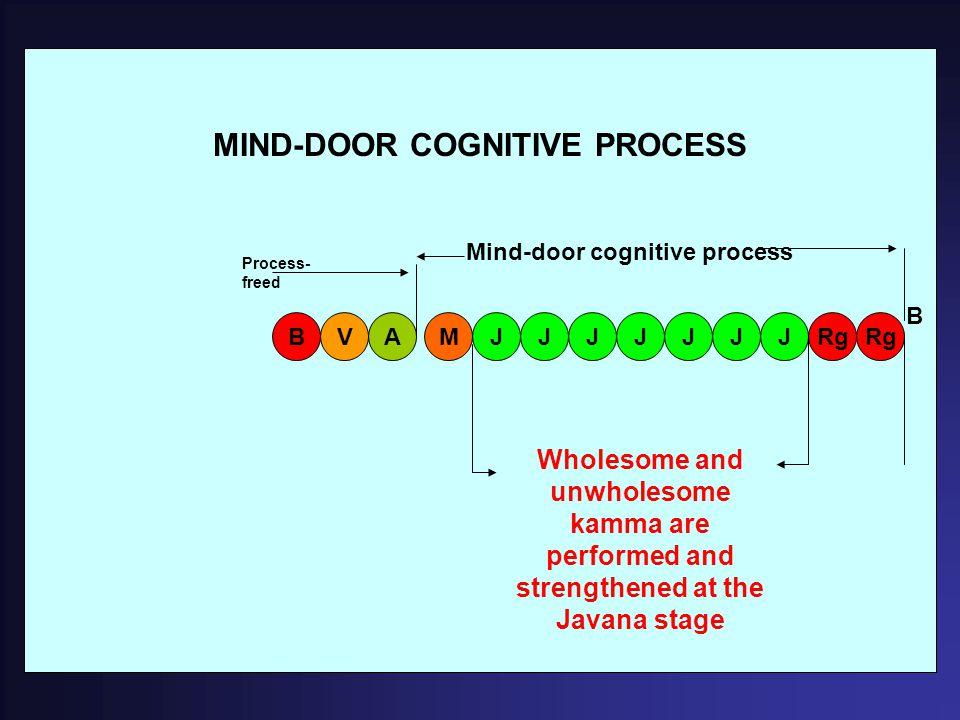 MIND-DOOR COGNITIVE PROCESS ARgV BMJJJJJJJ B Mind-door cognitive process Wholesome and unwholesome kamma are performed and strengthened at the Javana