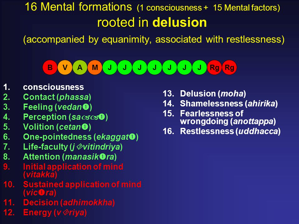 rooted in 16 Mental formations (1 consciousness + 15 Mental factors) rooted in delusion (accompanied by equanimity, associated with restlessness) 1.co