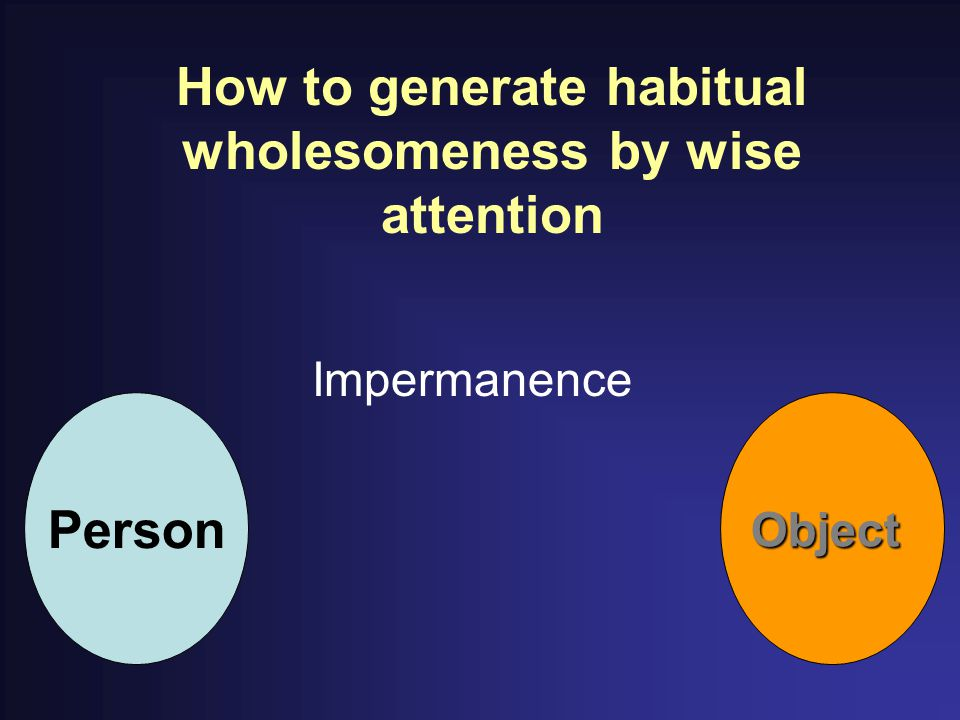 How to generate habitual wholesomeness by wise attention Impermanence PersonObject