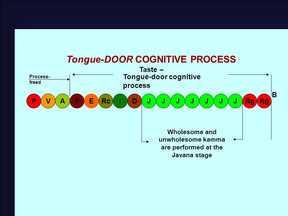 Tongue-DOOR COGNITIVE PROCESS Taste – EFARgV PRcIDJJJJJJJ B Tongue-door cognitive process Wholesome and unwholesome kamma are performed at the Javana stage Process- freed
