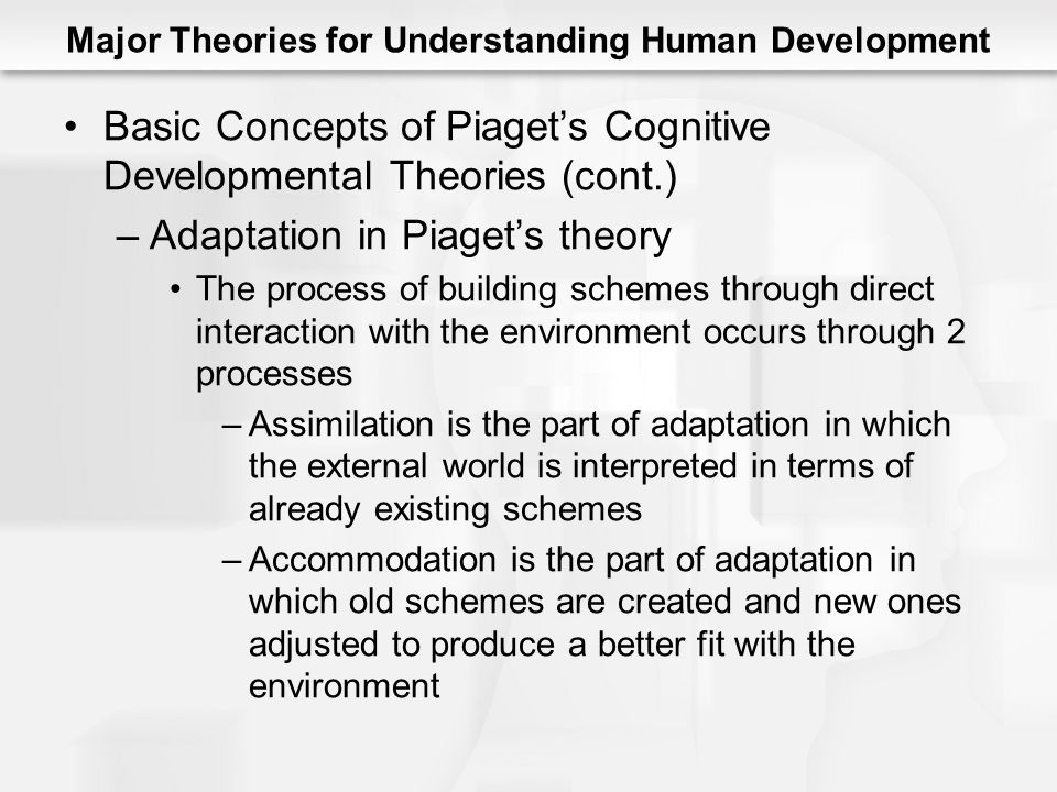 Major Theories for Understanding Human Development Basic Concepts of Piaget's Cognitive Developmental Theories (cont.) –Adaptation in Piaget's theory The process of building schemes through direct interaction with the environment occurs through 2 processes –Assimilation is the part of adaptation in which the external world is interpreted in terms of already existing schemes –Accommodation is the part of adaptation in which old schemes are created and new ones adjusted to produce a better fit with the environment