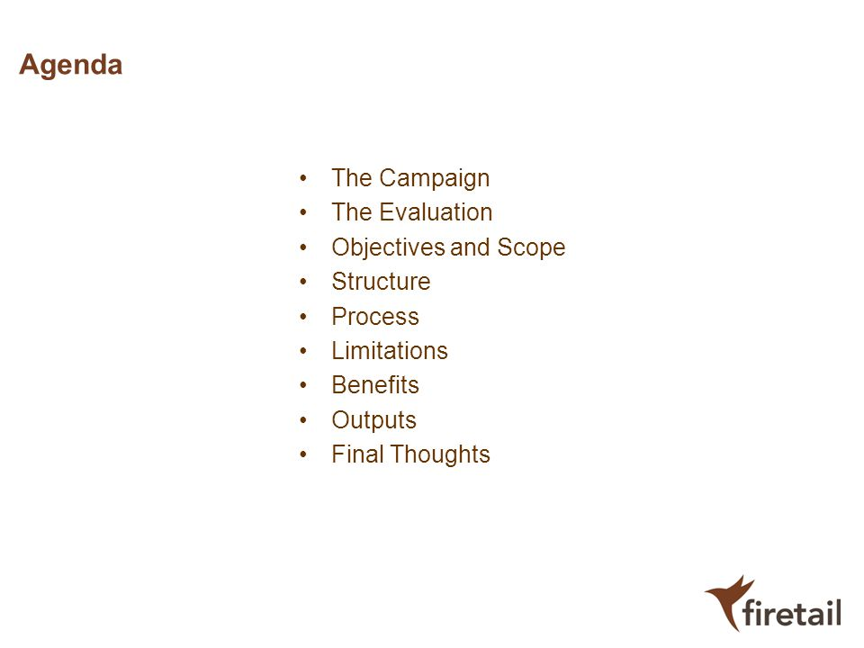 Agenda The Campaign The Evaluation Objectives and Scope Structure Process Limitations Benefits Outputs Final Thoughts