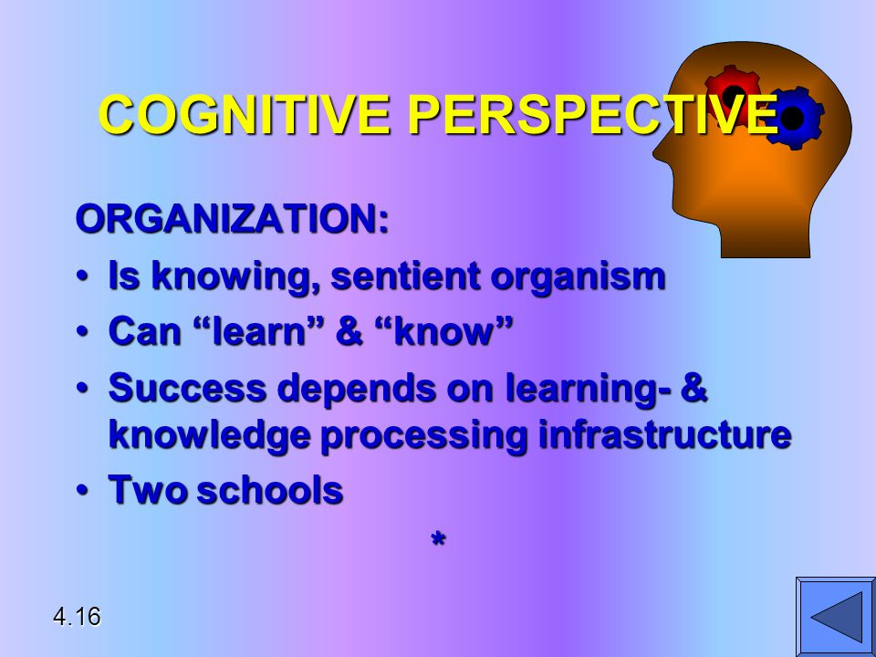 COGNITIVE PERSPECTIVE ORGANIZATION: Is knowing, sentient organismIs knowing, sentient organism Can learn & know Can learn & know Success depends on learning- & knowledge processing infrastructureSuccess depends on learning- & knowledge processing infrastructure Two schoolsTwo schools* 4.16