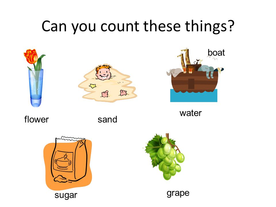 Can you count these things flower sand boat water sugar grape