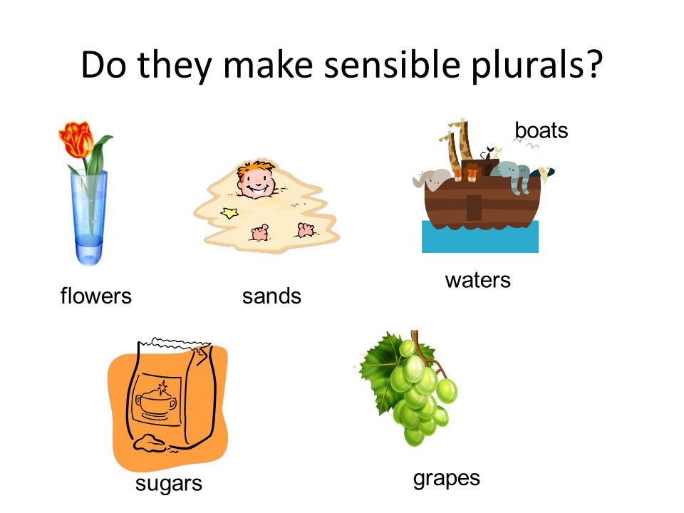 Do they make sensible plurals flowers sands boats waters sugars grapes